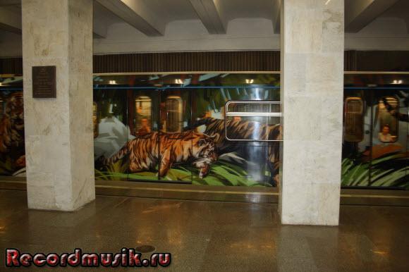 Отдых в Москве и Подмосковье - метро, тигры